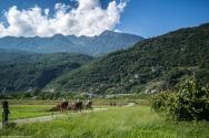maneggio isola del cavallo - in passeggiata_B173398